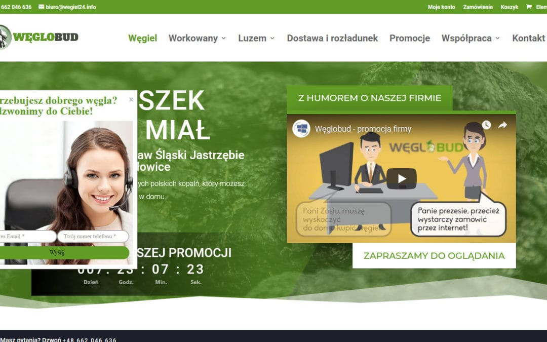 wegiel24.info